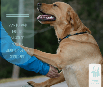 Tiefe Verbindung zwischen Mensch und Hund