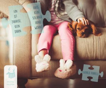 Ein Mädchen sitzt auf einem Sofa, der Hund liegt neben ihr.
