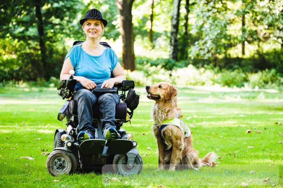 Foto Frau im Rollstuhl mit Assistenzhund