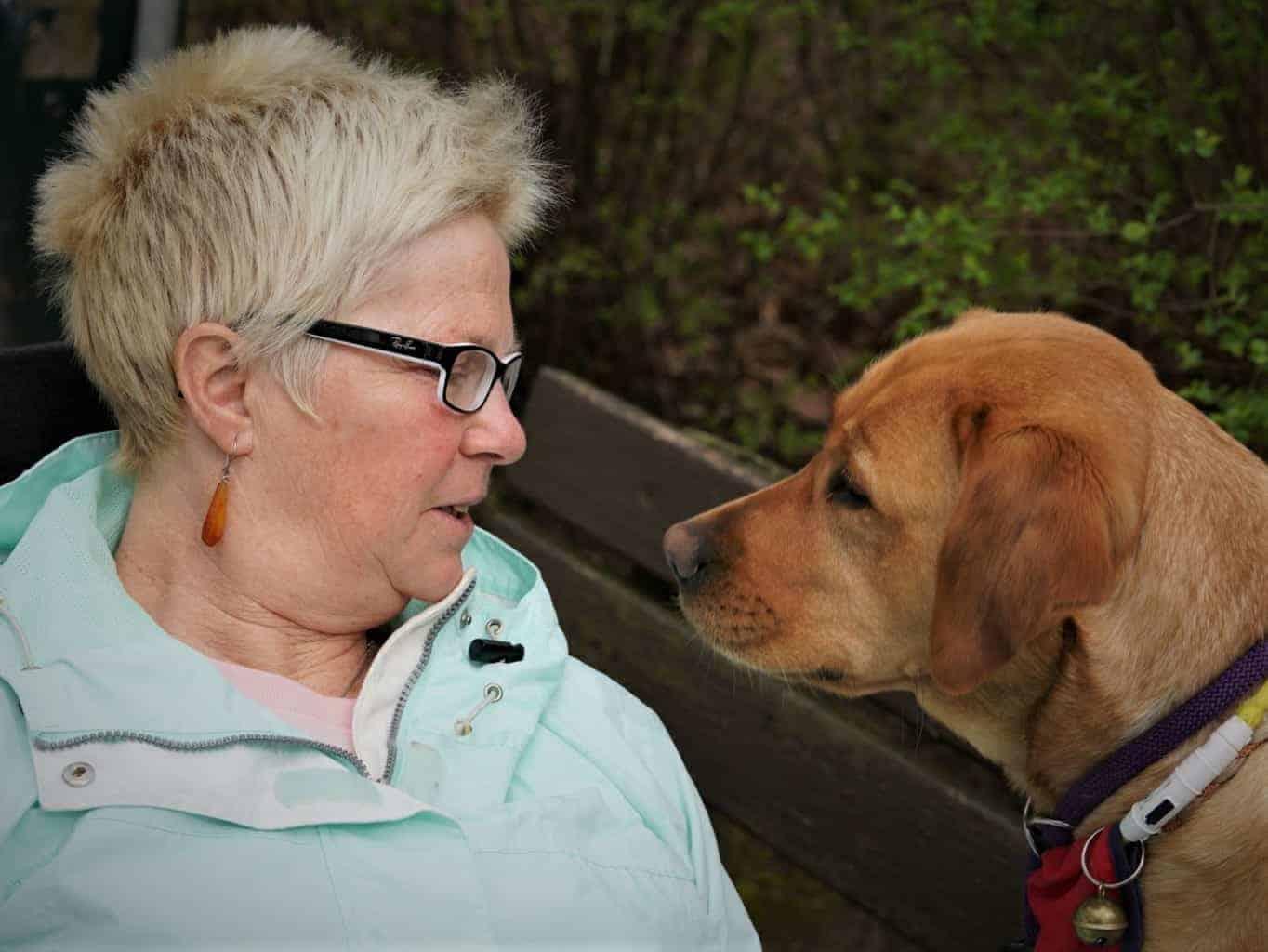Foto Hund und Halterin auf Bank :: Auf dem Foto schauen sich Assistenzhund und seine Halterin auf einer Bank sitzend in die Augen.