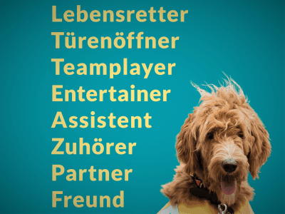 Foto Banner Assistenzhund Synonyme