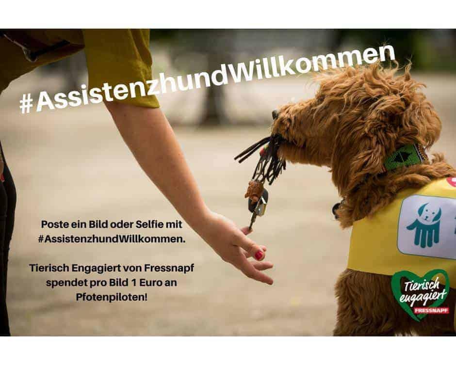 #Assistenzhund Willkommen