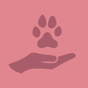 Grafik Hand und Hundepfote