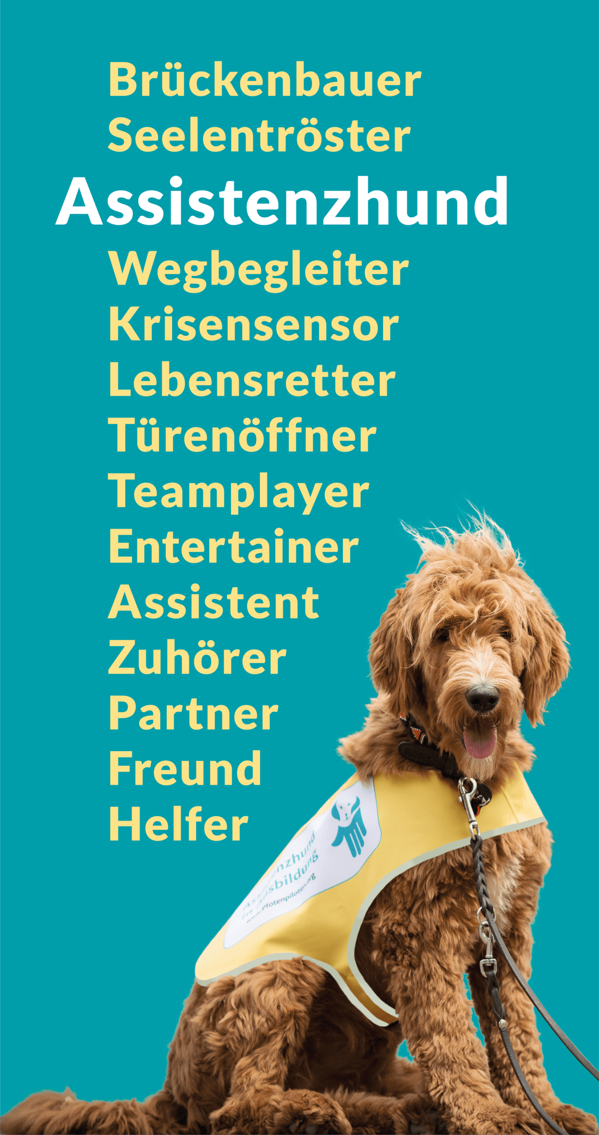 Graphic assistance dog synonyms :: Above and next to a light brown, shaggy Labradoodle assistance dog, along with the bold word