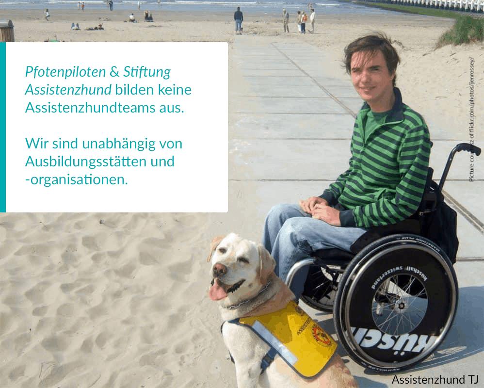 Bild von jungem Mann mit Assistenzhund :: Junger Mann im Rollstuhl am Sandstrand. Er und sein gelber Labrador gucken freundlich in die Kamera, im Hintergrund Sandstrand und das Meer.