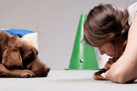 Hund und Trainer auf Augenhöhe
