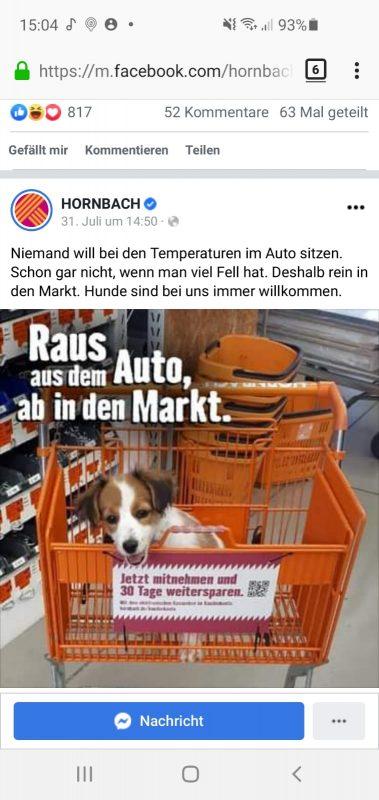 """Bild von einem Facebookpost von Hornbach: Bild: Ein kleines süßes Hündchen sitzt im orangenen Hornbach Einkaufswagen im Laden. Im Bild steht """"Raus aus dem Auto, ab in den Markt."""" Dazu der Text: Niemand will bei den Temperaturen im Auto sitzen. Schon gar nicht, wenn man viel Fell hat. Deshalb rein in den Markt. Hunde sind bei uns immer willkommen."""