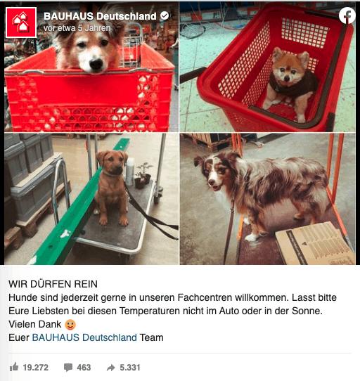 Auf der Facebookseite von BAUHAUS Deutschland sieht man vier Bilder von süßen Hunden, die im Einkaufswagen sitzen. Dazu der Text:WIR DÜRFEN REIN Hunde sind jederzeit gerne in unseren Fachcentren willkommen. Lasst bitte Eure Liebsten bei diesen Temperaturen nicht im Auto oder in der Sonne. Vielen Dank :-) Euer BAUHAUS Deutschland Team