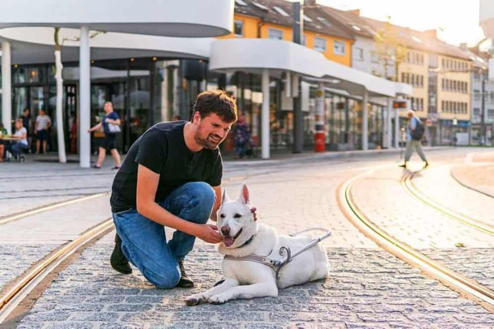 Blindenführhund-Team im assistenzhundfreundlichen Freiburg
