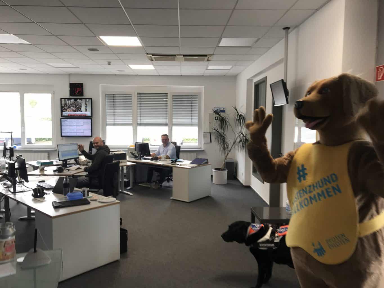 Benji sorgt für gute Laune in der Radioredaktion von Radio Hellweg.